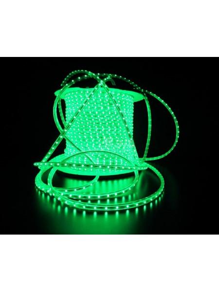 Вуличний плоский світлодіодний шнур Lumion Led Duralight 6 * 12 мм 60 LED / м.п. зовнішній колір зелений (1046304793) Гірлянди - інтернет - магазині Моя Лампа ™