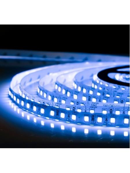 Светодиодная лента LED K2  4,8W 60Led IP21 12V синяя (KCL-004 синя) Светодиодная лента + блоки - интернет - магазин Моя Лампа ™