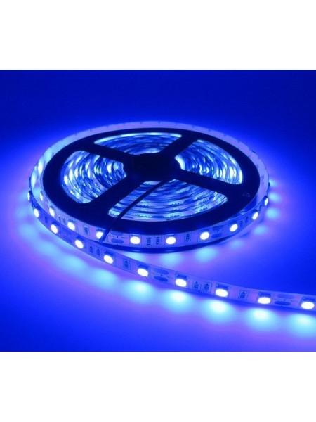 Светодиодная лента LED K2 14,4W 60Led IP21 12V синяя (KCL-005 синя) Светодиодная лента + блоки - интернет - магазин Моя Лампа ™