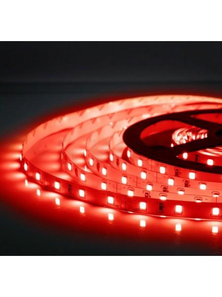Светодиодная лента LED K2  4,8W 60Led IP21 12V красная (KCL-004 червона) Светодиодная лента + блоки - интернет - магазин Моя Лампа ™