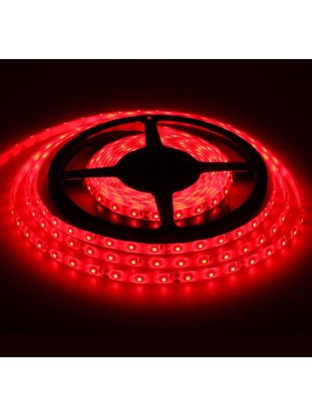 Светодиодная лента LED K2  4,8W 60Led IP65 12V красная (KCL-002 червона) Светодиодная лента + блоки - интернет - магазин Моя Лампа ™