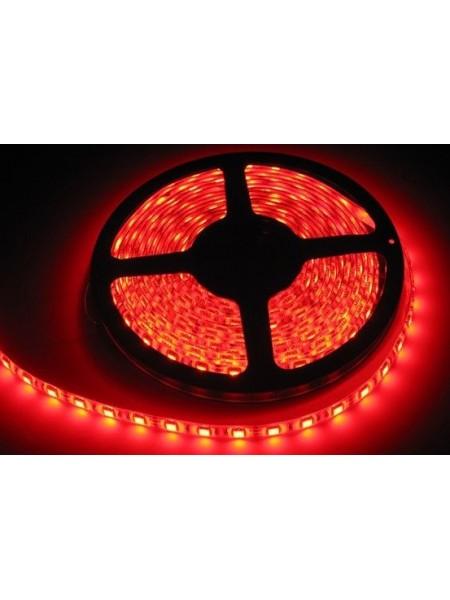 Светодиодная лента LED K2 14,4W 60Led IP65 12V красная (KCL-003 червона) Светодиодная лента + блоки - интернет - магазин Моя Лампа ™