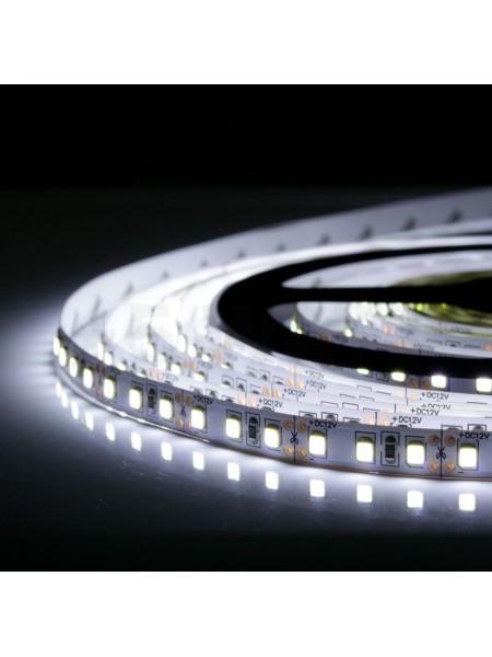 Светодиодная лента LED K2  4,8W 60Led IP21 12V хол.белый (KCL-004 хол.білий) Светодиодная лента + блоки - интернет - магазин Моя Лампа ™