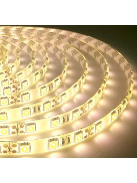 Светодиодная лента LED K2 14,4W 60Led IP65 12V тепл.белый (KCL-003 тепл.білий) Светодиодная лента + блоки - интернет - магазин Моя Лампа ™