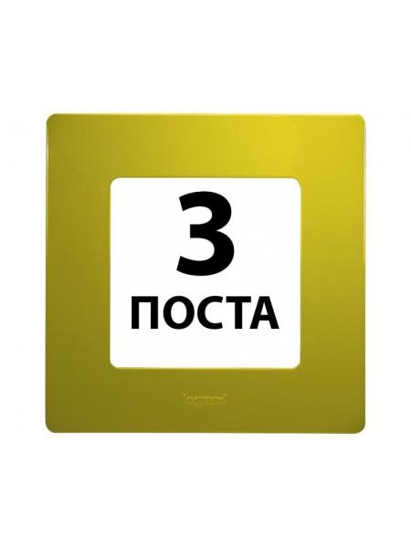 Рамки 3 поста Зелений папороть 672543 Legrand Etika (672543) Etika - интернет - магазин Моя Лампа ™